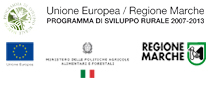 FONDO EUROPERO AGRICOLO PER LO SVILUPPO RURALE: L'EUROPA INVESTE NELLE ZONE RURALI